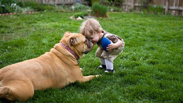20 Big Dogs with Babies 38