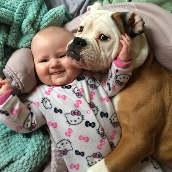 20 Big Dogs with Babies 5