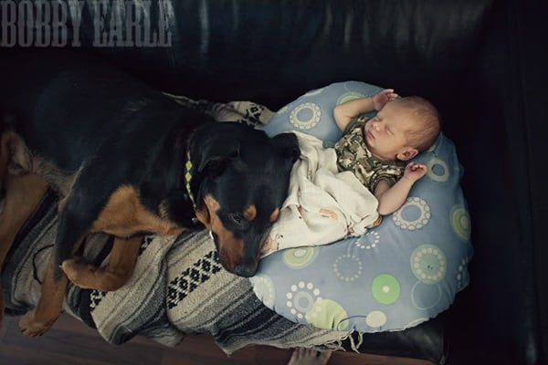 20 Big Dogs with Babies 8