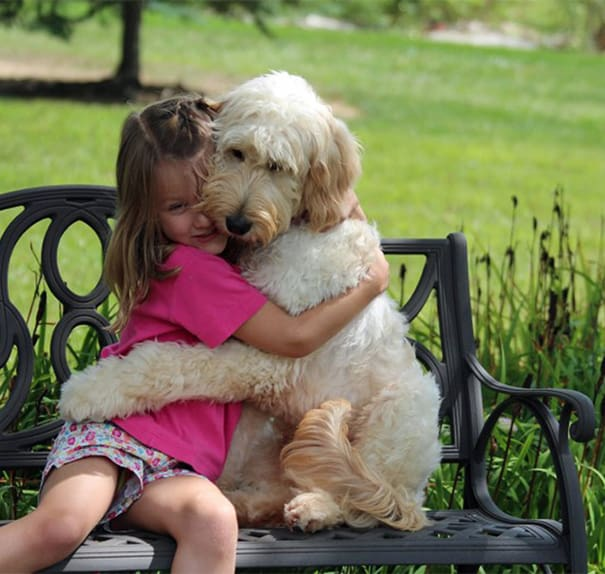 40 Pictures of Animals and Humans Hugging 1 (15)