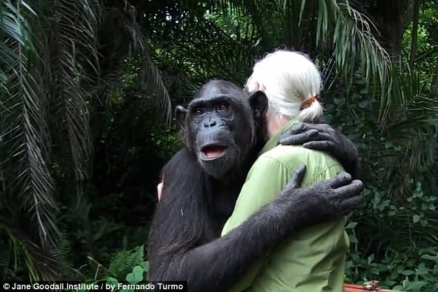 40 Pictures of Animals and Humans Hugging 1 (25)