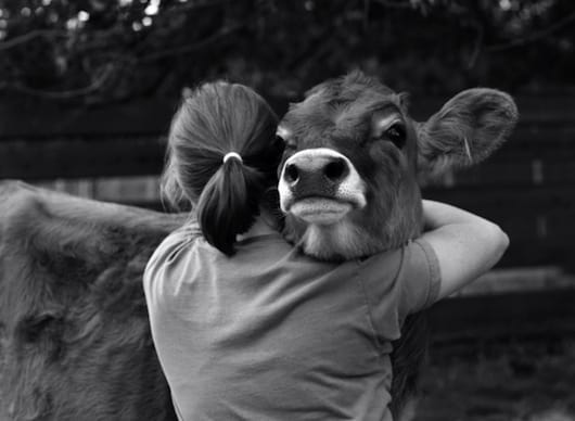 40 Pictures of Animals and Humans Hugging 1 (4)