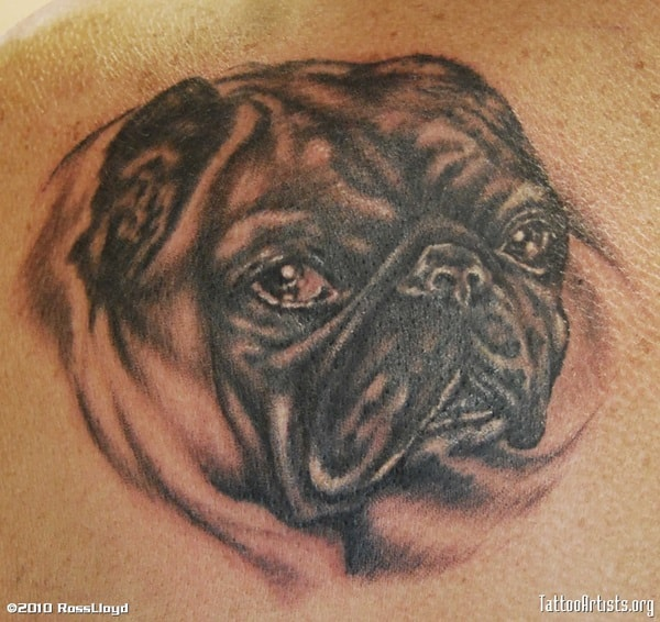 40 Pug Tattoo Pictures 29