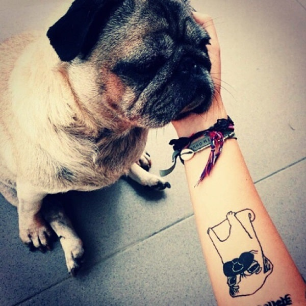 40 Pug Tattoo Pictures 40