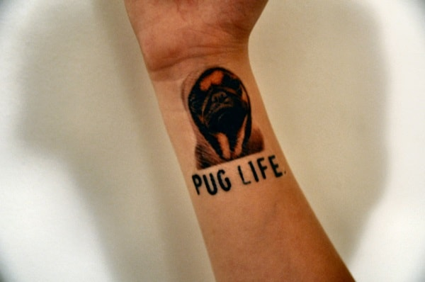 40 Pug Tattoo Pictures 9