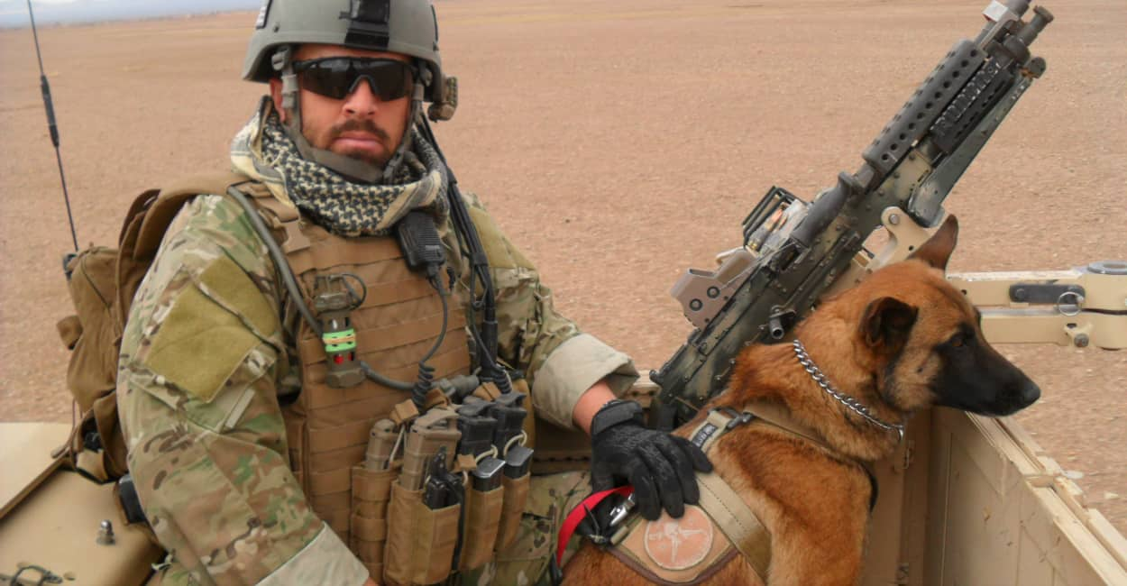 40 Sizzling Pictures of Military Service Dogs  (12)