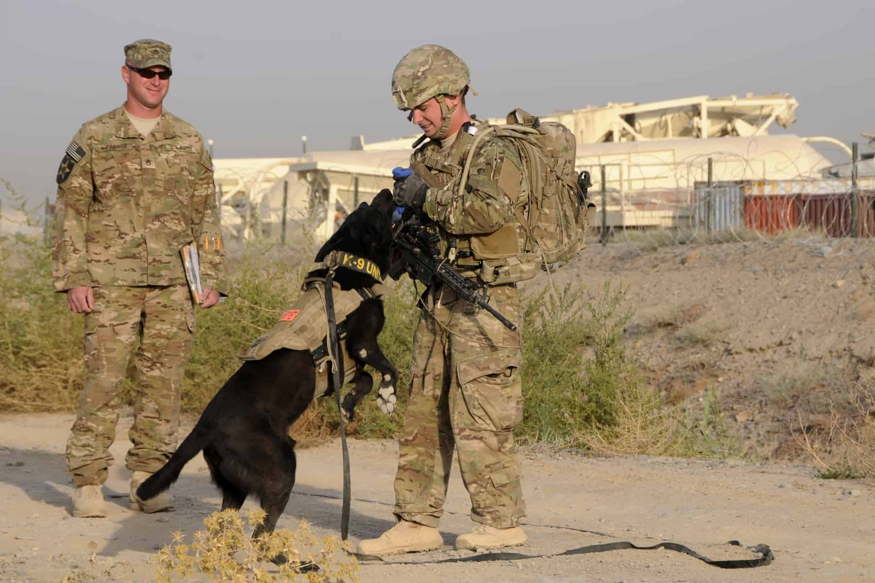 U.S. Air Force Staff Sgt. Larry Harris, a Military Working Dog handler, rewards his dog, Aaron, for finding simulated explosives buried along a road at Kandahar Airfield, Afghanistan on July 9, 2012 during a training exercise while U.S. Army Staff Sgt. Joshua Parker looks on. The handlers and their dogs rotate through Kandahar Airfield for validation prior to moving out to Forward Operating Bases around the country where they will lead combat foot patrols and sniff out IEDs and other explosives. (U.S. Air Force photo/TSgt. Stephen Hudson) (U.S. Air Force photo/TSgt. Stephen Hudson)