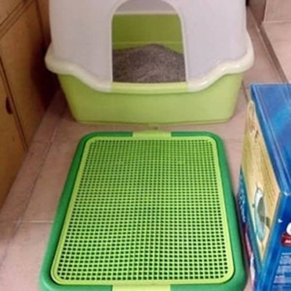 5 Indoor Dog Potty Slolutions that will Free you from the Leash 4