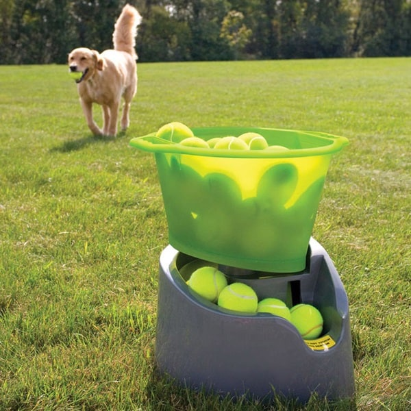 10 Gadgets for the Pet Loving Owners 3