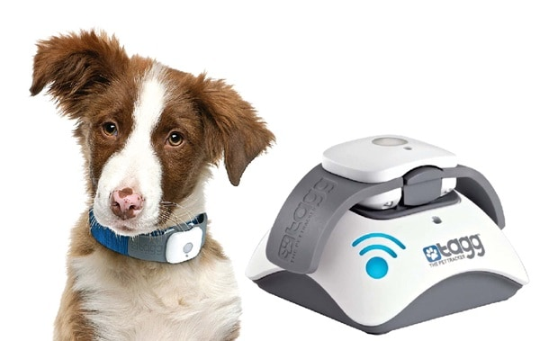 10 Gadgets for the Pet Loving Owners 5