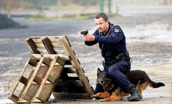 20 Cute and Intellegent Police Dog Moves Captured 10