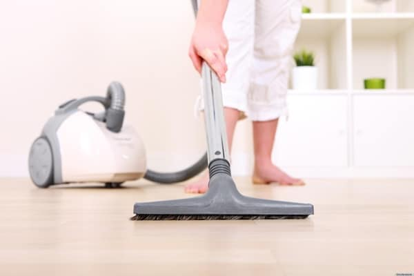 Cleaning Tips every Dog Owner should Know2