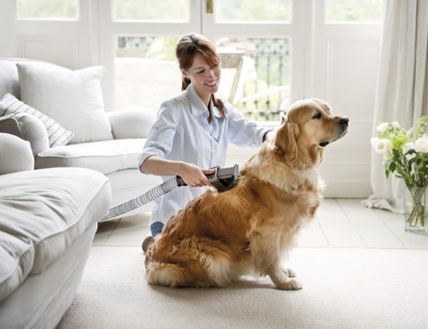 Cleaning Tips every Dog Owner should Know5