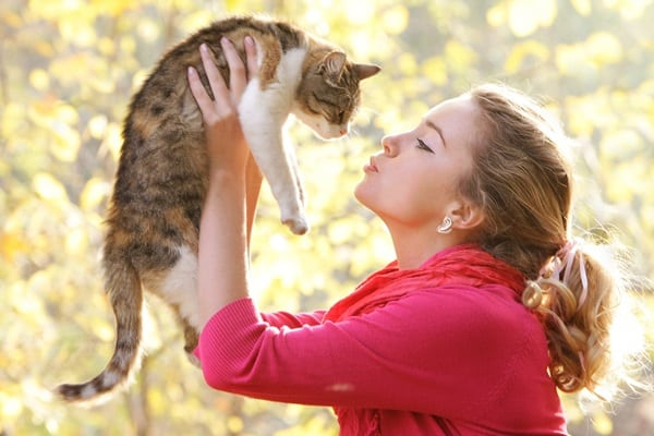 Tips for Raising a Friendly Cat 2