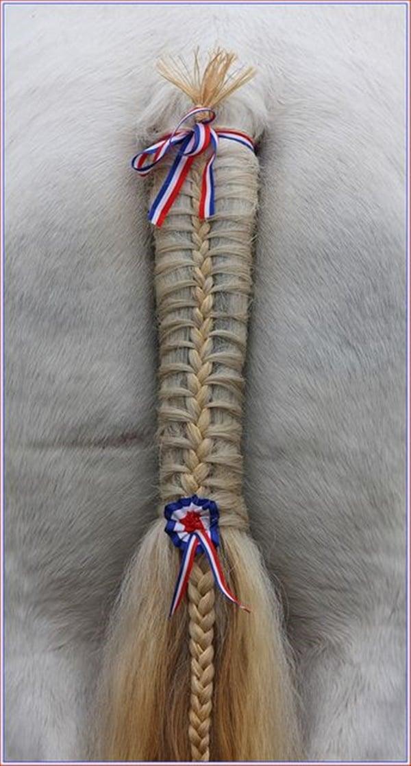 30 Horse Tail Braids Ideas 15