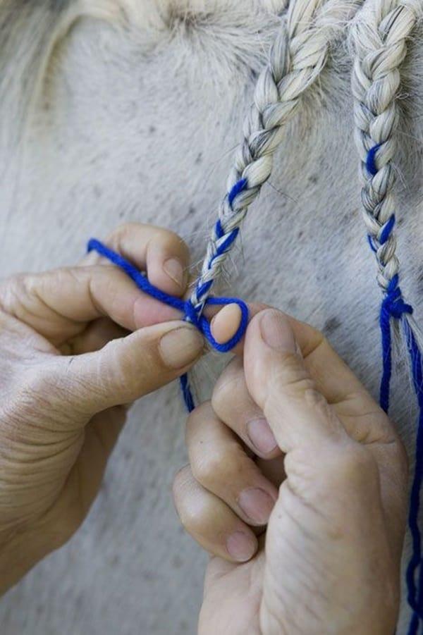 30 Horse Tail Braids Ideas 17