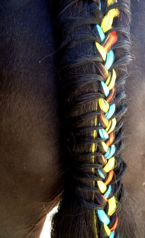 30 Horse Tail Braids Ideas 18