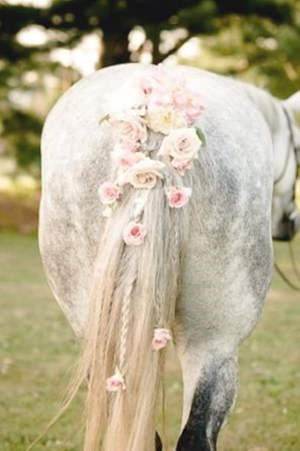 30 Horse Tail Braids Ideas 19