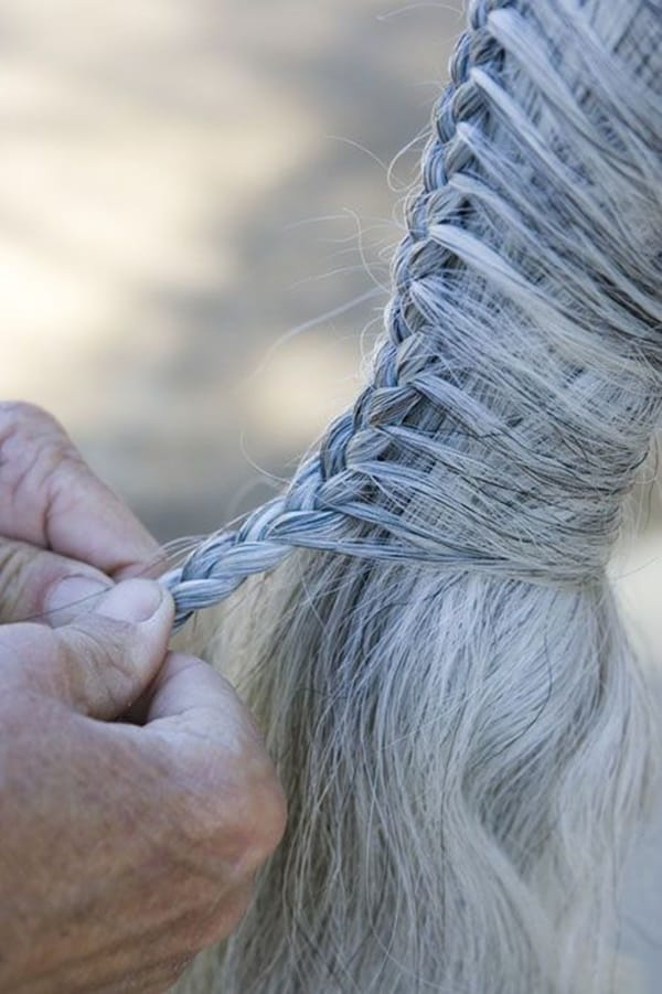 30 Horse Tail Braids Ideas 5
