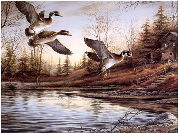 40 Outstanding Oil Painting on Animals 1