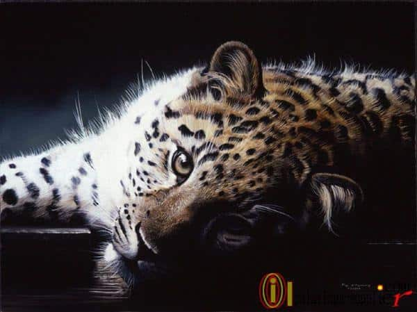 40 Outstanding Oil Painting on Animals 14