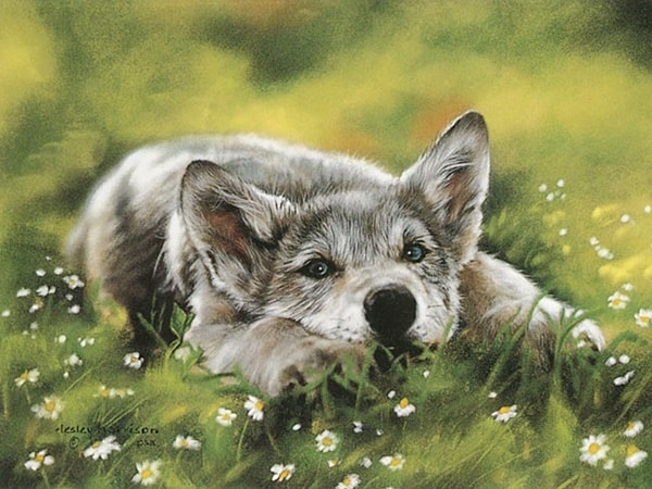 40 Outstanding Oil Painting on Animals 15
