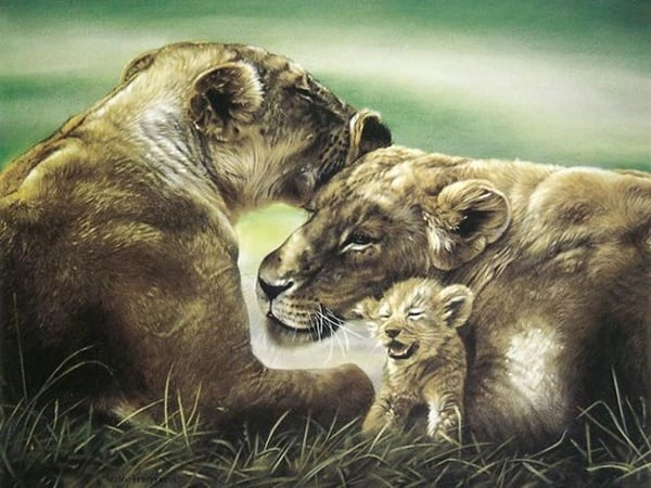40 Outstanding Oil Painting on Animals 19