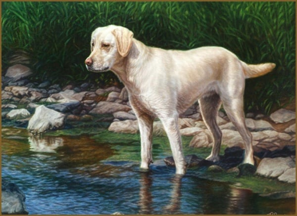 40 Outstanding Oil Painting on Animals 23