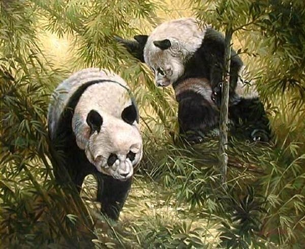40 Outstanding Oil Painting on Animals 24