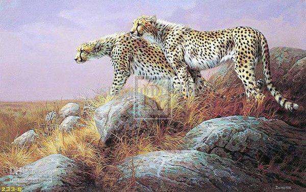 40 Outstanding Oil Painting on Animals 31