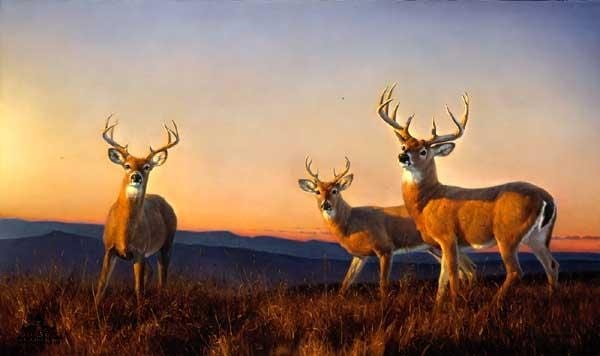 40 Outstanding Oil Painting on Animals 5