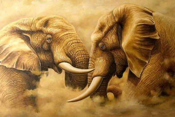 Animal Oil Paintings On Canvas