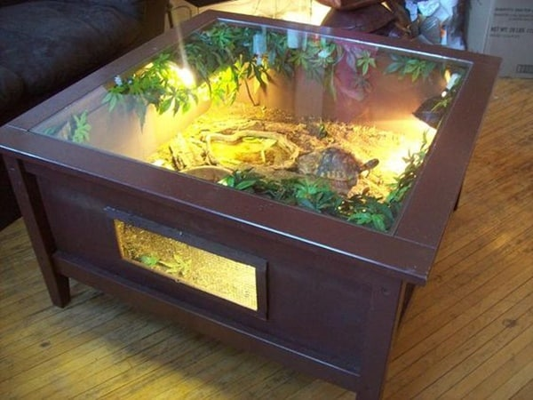 10 Beautiful Ideas of Tortoise Crate 10