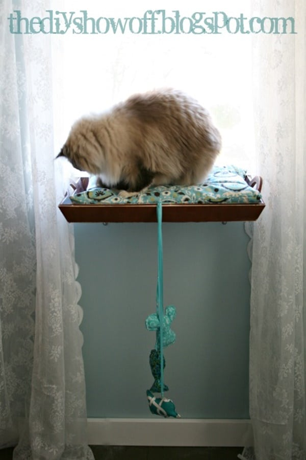 10 Cool Hanging Cat Perch Ideas 10