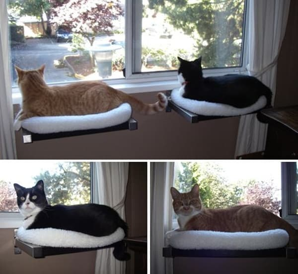 10 cool hanging cat perch ideas tail and fur for Cool cat perches