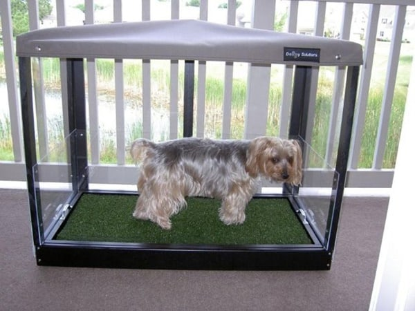 Exceptionnel 20 Cheap And Indoor Dog Bathroom Ideas 1