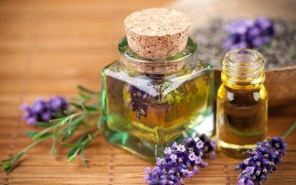 40 Effective Honey Bee Sting Treatment 1