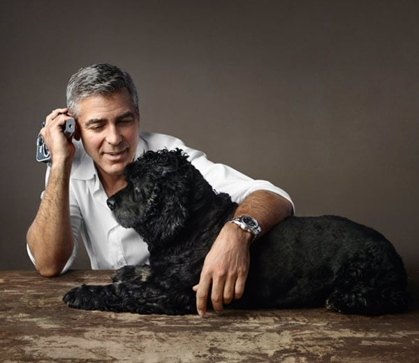 15 Celebrities with Rescue Dogs 12