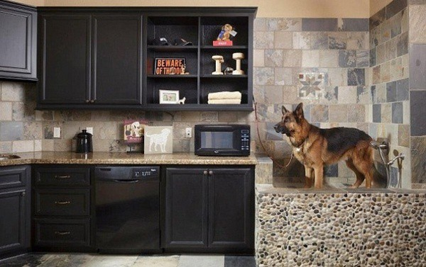 High Quality 40 Easy Dog Wash Area Ideas 11