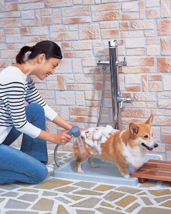 40 Easy Dog Wash Area Ideas 2