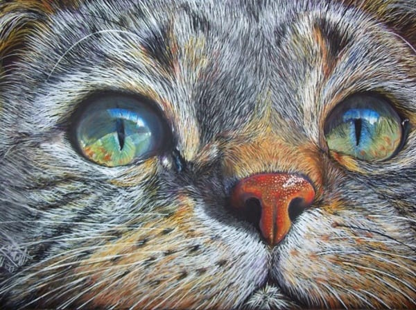 40 Great Examples of Cute and Majestic Cat Drawings 16