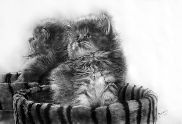 40 Great Examples of Cute and Majestic Cat Drawings 34