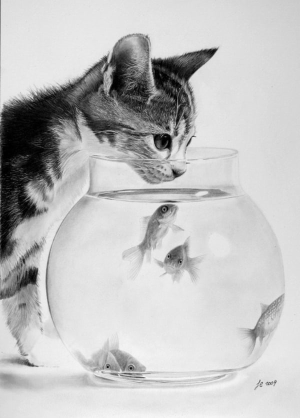 40 Great Examples of Cute and Majestic Cat Drawings 35