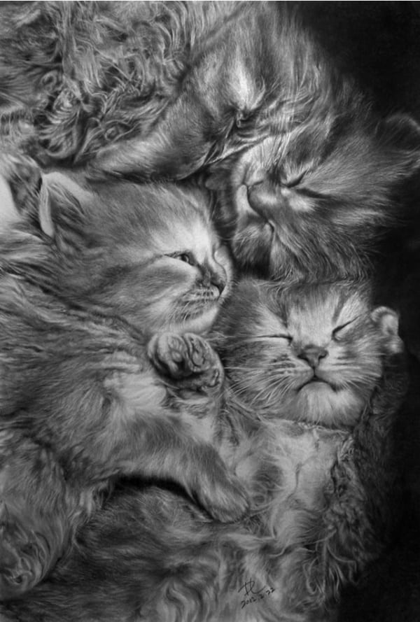 40 Great Examples of Cute and Majestic Cat Drawings 37