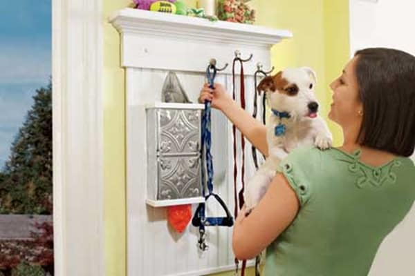 great-changes-in-your-house-that-your-dog-will-feel-comfortable-with-6