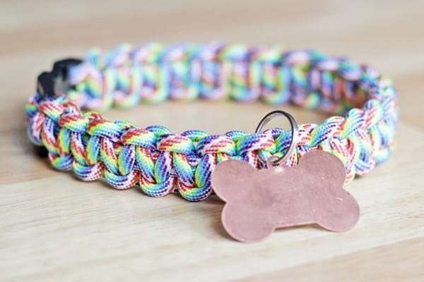 10-best-designer-dog-collar-ideas-4