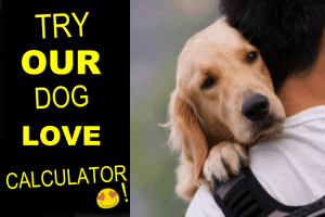 Dog Love Calculator