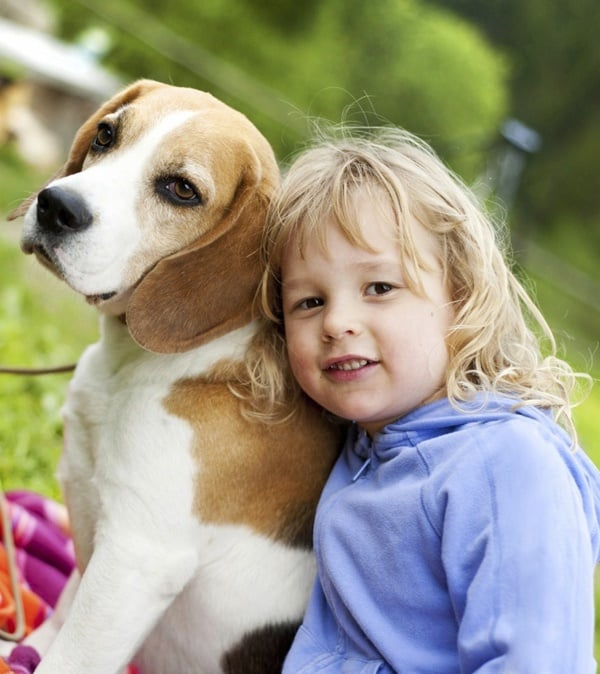 Best Family Dogs for Kids