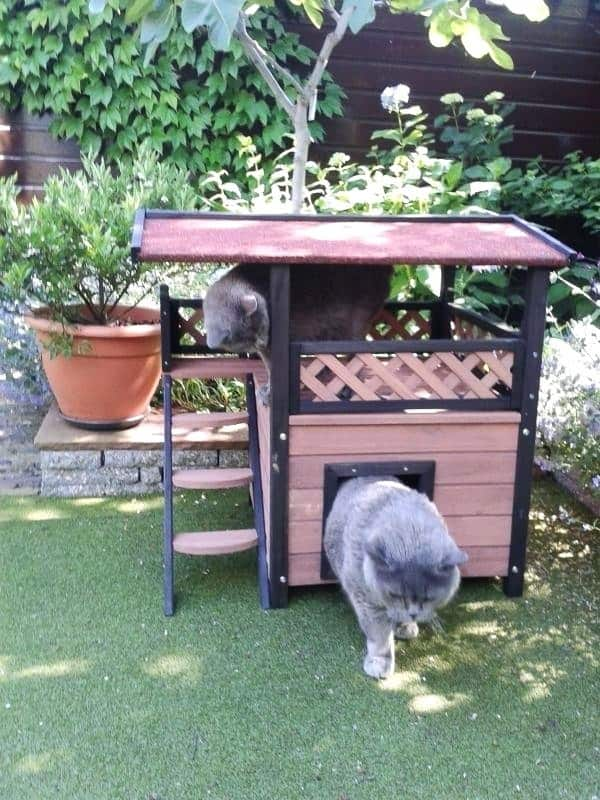 Warm Ideas For Outdoor Cat Houses For Winters