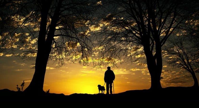 enjoying life with dog